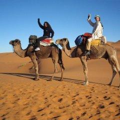 Отель Haven La Chance Desert Hotel Марокко, Мерзуга - отзывы, цены и фото номеров - забронировать отель Haven La Chance Desert Hotel онлайн спортивное сооружение