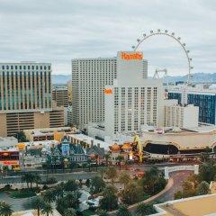 Отель The Mirage США, Лас-Вегас - 10 отзывов об отеле, цены и фото номеров - забронировать отель The Mirage онлайн фото 5