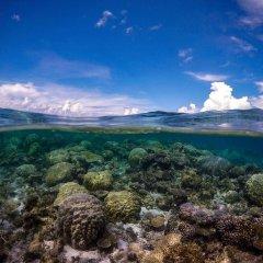 Отель Ninamu Resort - All Inclusive Французская Полинезия, Тикехау - отзывы, цены и фото номеров - забронировать отель Ninamu Resort - All Inclusive онлайн приотельная территория