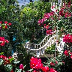 Отель Aventura Mexicana фото 2