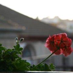 Simsim Guest House Израиль, Назарет - отзывы, цены и фото номеров - забронировать отель Simsim Guest House онлайн балкон
