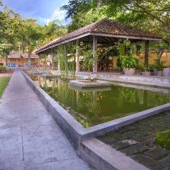 Отель Vibration Шри-Ланка, Хиккадува - отзывы, цены и фото номеров - забронировать отель Vibration онлайн