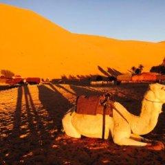 Отель Auberge Kasbah Des Dunes Марокко, Мерзуга - отзывы, цены и фото номеров - забронировать отель Auberge Kasbah Des Dunes онлайн фото 11