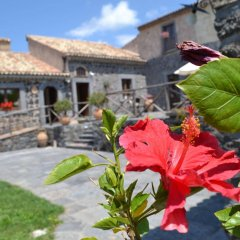 Отель Bosco Ciancio Италия, Бьянкавилла - отзывы, цены и фото номеров - забронировать отель Bosco Ciancio онлайн фото 2