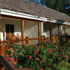 Отель Tropica Island Resort - Adults Only фото 8