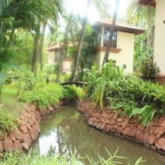 Отель Coconut Creek Гоа