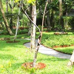 Отель Dalmanuta Gardens Шри-Ланка, Бентота - отзывы, цены и фото номеров - забронировать отель Dalmanuta Gardens онлайн фото 8
