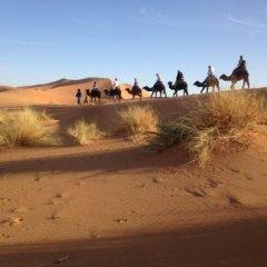 Отель Camp Under Stars - Adults Only Марокко, Мерзуга - отзывы, цены и фото номеров - забронировать отель Camp Under Stars - Adults Only онлайн пляж фото 2