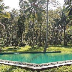 Отель Plantation Villa Ayurveda Yoga Resort бассейн фото 3