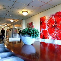 Отель New West Inn Нидерланды, Амстердам - 6 отзывов об отеле, цены и фото номеров - забронировать отель New West Inn онлайн помещение для мероприятий фото 2