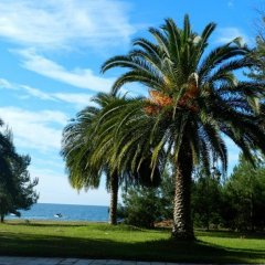 Гостиница Малахит пляж