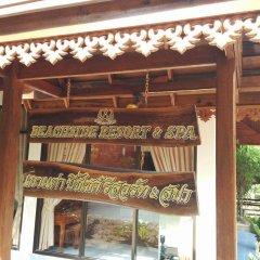 Отель Koh Tao Beachside Resort Таиланд, Остров Тау - отзывы, цены и фото номеров - забронировать отель Koh Tao Beachside Resort онлайн развлечения