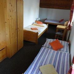 Отель Penzion U Studánky Чехия, Чодов - отзывы, цены и фото номеров - забронировать отель Penzion U Studánky онлайн балкон