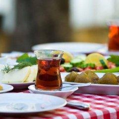 Отель Tashmahal Чешме питание фото 2
