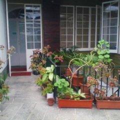 Отель Hospedaria Jomafreitas Понта-Делгада интерьер отеля фото 2