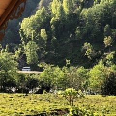 Tanura Bungalows Турция, Чамлыхемшин - отзывы, цены и фото номеров - забронировать отель Tanura Bungalows онлайн