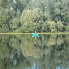 Гостиница Stolitsa mira в Озерках отзывы, цены и фото номеров - забронировать гостиницу Stolitsa mira онлайн Озерки приотельная территория