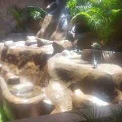 Отель Playa Conchas Chinas Пуэрто-Вальярта с домашними животными
