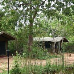 Отель Big Game Camp Yala Шри-Ланка, Катарагама - отзывы, цены и фото номеров - забронировать отель Big Game Camp Yala онлайн фото 13