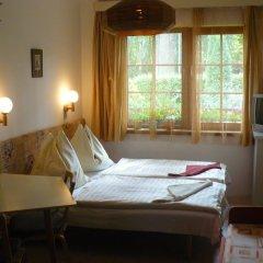 Отель Penzion Mašek Чехия, Хеб - отзывы, цены и фото номеров - забронировать отель Penzion Mašek онлайн комната для гостей