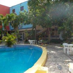 Отель Mango Доминикана, Бока Чика - отзывы, цены и фото номеров - забронировать отель Mango онлайн бассейн фото 2