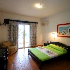 Отель Villa Phoenix Apartments & Studios Греция, Закинф - отзывы, цены и фото номеров - забронировать отель Villa Phoenix Apartments & Studios онлайн комната для гостей фото 4
