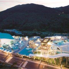 Отель Phoenix Pyeongchang Hotel Южная Корея, Пхёнчан - отзывы, цены и фото номеров - забронировать отель Phoenix Pyeongchang Hotel онлайн фото 9