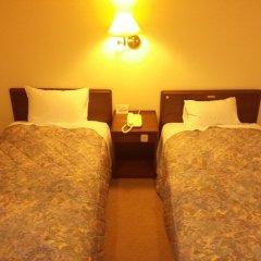 Mount View Hotel Камикава комната для гостей фото 2