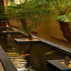 Отель Two Seasons Boracay Resort