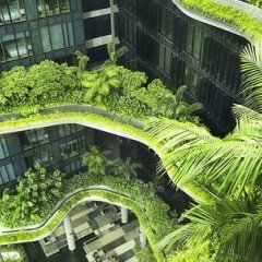 Отель PARKROYAL on Pickering Сингапур, Сингапур - 3 отзыва об отеле, цены и фото номеров - забронировать отель PARKROYAL on Pickering онлайн фото 10