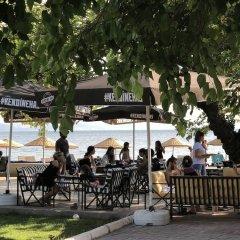 Kiraz Mini Motel & Beach Турция, Эрдек - отзывы, цены и фото номеров - забронировать отель Kiraz Mini Motel & Beach онлайн бассейн