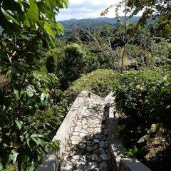 Отель Treetops Villa Порт Антонио фото 5