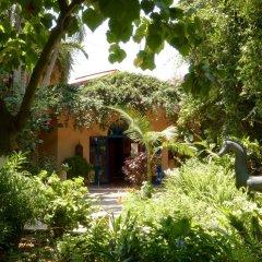 Отель La Villa Mandarine Марокко, Рабат - отзывы, цены и фото номеров - забронировать отель La Villa Mandarine онлайн фото 5