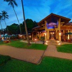 Отель Royal Palms Beach Hotel Шри-Ланка, Калутара - отзывы, цены и фото номеров - забронировать отель Royal Palms Beach Hotel онлайн гостиничный бар