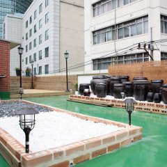 Отель Seoul City Hotel Южная Корея, Сеул - отзывы, цены и фото номеров - забронировать отель Seoul City Hotel онлайн бассейн фото 2