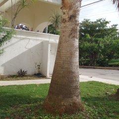 Отель Kukulcan Hostel & Friends Мексика, Канкун - отзывы, цены и фото номеров - забронировать отель Kukulcan Hostel & Friends онлайн фото 2