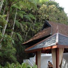 Отель Cameron Highlands Resort фото 11