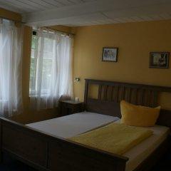 Отель Forsthaus Германия, Вольфенбюттель - отзывы, цены и фото номеров - забронировать отель Forsthaus онлайн комната для гостей фото 2