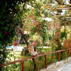 Summer Lodge in Agia Marina, Greece from 64$, photos, reviews - zenhotels.com photo 7
