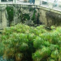 Отель Sogno Vacanze Siracusa Италия, Сиракуза - отзывы, цены и фото номеров - забронировать отель Sogno Vacanze Siracusa онлайн балкон