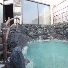 Отель KOHANTEI Никко бассейн фото 2