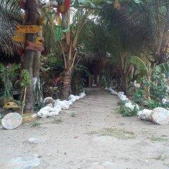 Отель Coco cabañas пляж