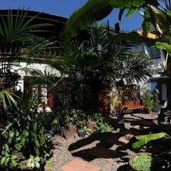 Отель Lotus Villa фото 11