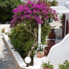 Отель Domna Греция, Миконос - отзывы, цены и фото номеров - забронировать отель Domna онлайн фото 3