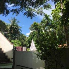 Отель Jungle Guest House Шри-Ланка, Галле - отзывы, цены и фото номеров - забронировать отель Jungle Guest House онлайн фото 5