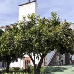 Отель Hostal San Miguel Испания, Трухильо - отзывы, цены и фото номеров - забронировать отель Hostal San Miguel онлайн фото 6