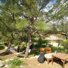 Гостевой Дом Dionysos Lodge фото 9