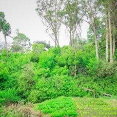 Отель Forest View Cottage Шри-Ланка, Нувара-Элия - отзывы, цены и фото номеров - забронировать отель Forest View Cottage онлайн фото 3