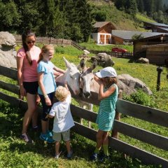 Отель Alphotel Tyrol Рачинес-Ратскингс приотельная территория фото 2