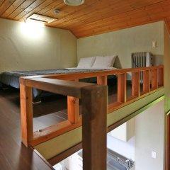 Отель Chalet Resort Южная Корея, Пхёнчан - отзывы, цены и фото номеров - забронировать отель Chalet Resort онлайн детские мероприятия фото 2